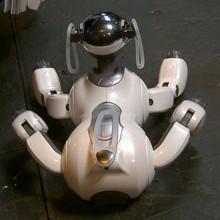 Psí robot Aibo